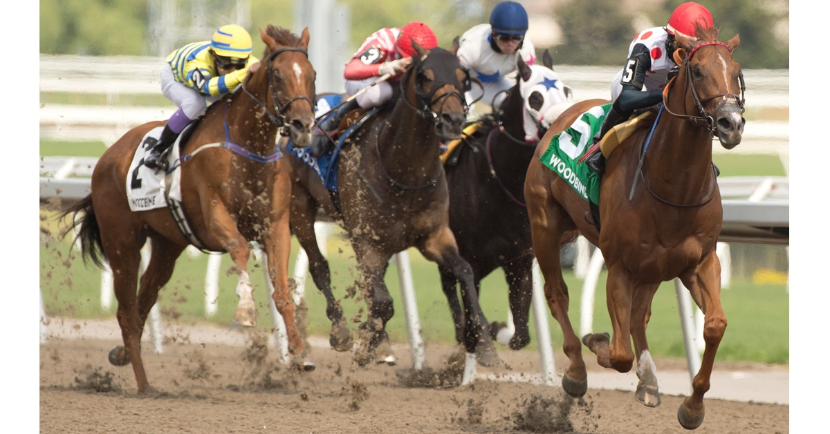 Thumbnail for Live Horse Racing is Coming to Streaming Platform DAZN Canada