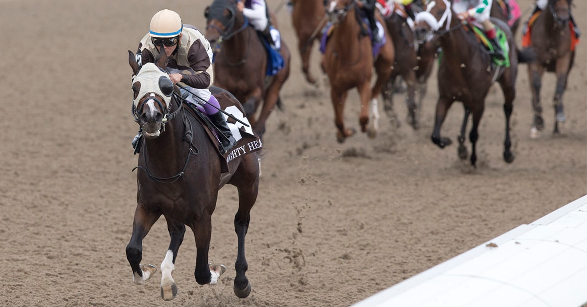 Thumbnail for Mighty Heart Headlines Field For Dominion Day Stakes