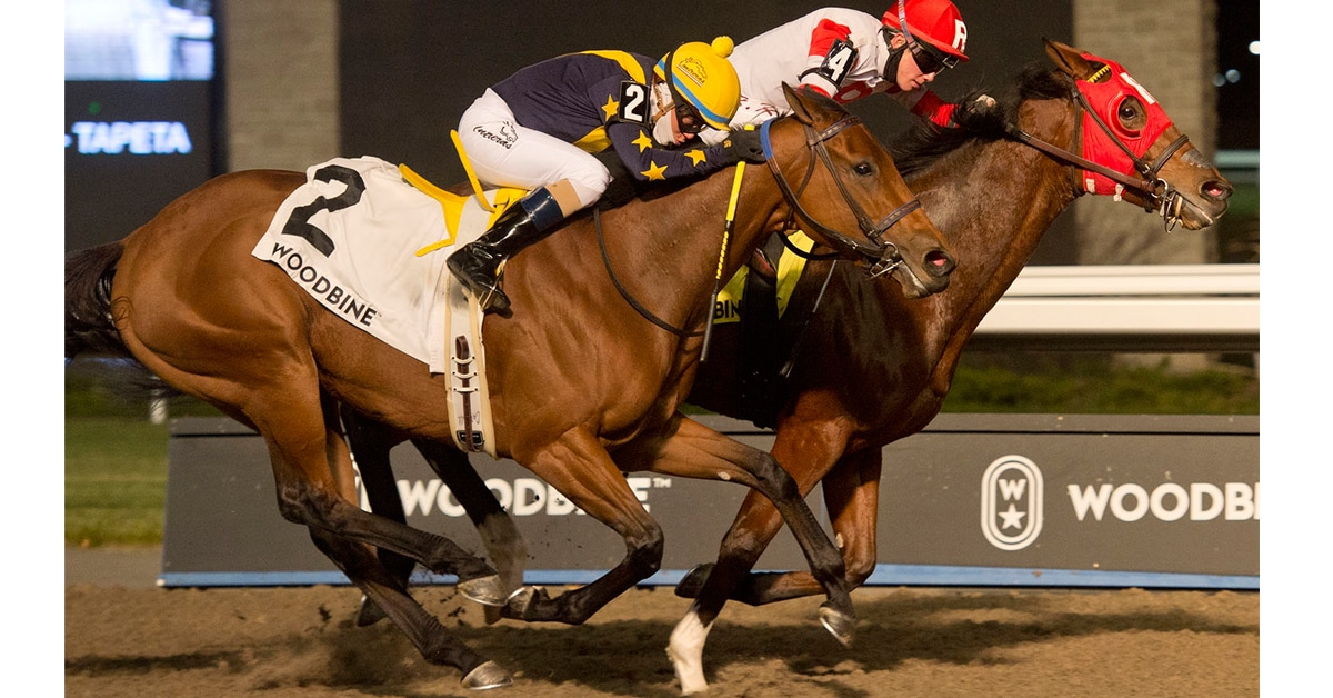 Thumbnail for Champion Artie's Princess Headlines Grade 3 Whimsical Stakes