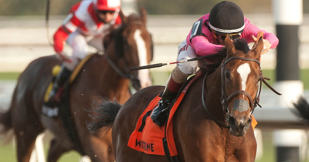 Thumbnail for Mark Casse Sends Out Three to Contest Trillium Stakes