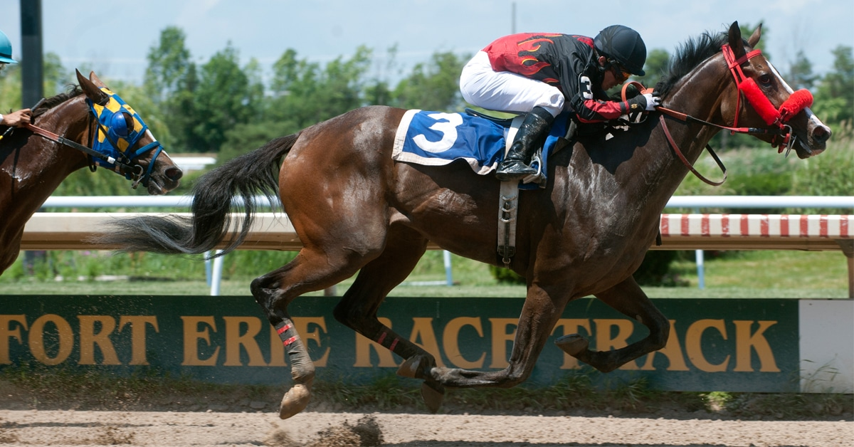 Thumbnail for Fort Erie Racetrack to Allow Spectators Beginning July 12