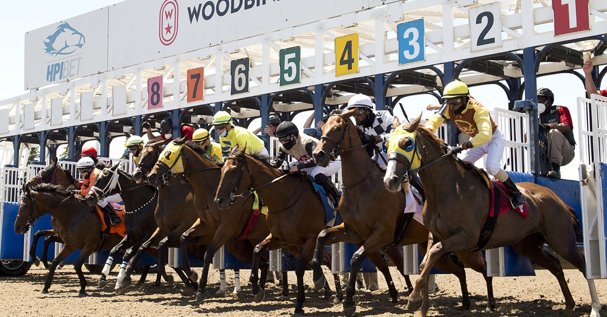 Thumbnail for Wagering of $13.3 Million for Opening Weekend of Woodbine