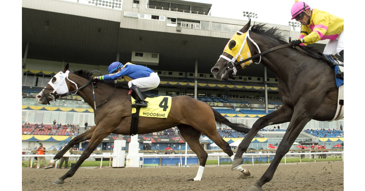Thumbnail for Avoman Wins Eventful Plate Trial for Don MacRae and Bruce Family